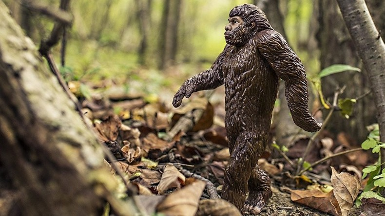 Think Big: Mutter verklagt Kalifornien auf Anerkennung der Existenz von Bigfoot