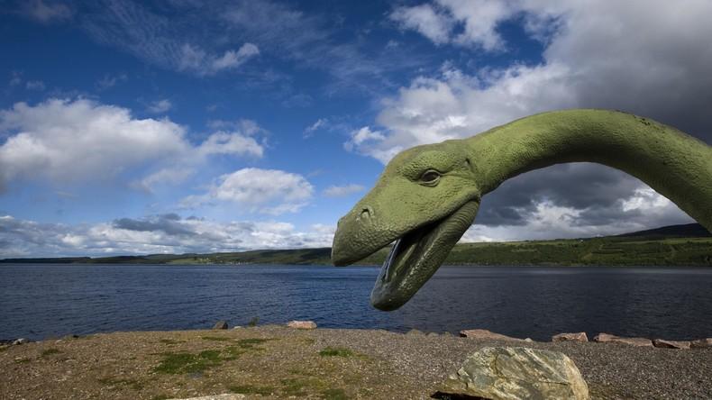 Ist das Ungeheuer von Loch Ness tot? Mysteriöses Nessie-ähnliches Wesen an US-Strand gespült