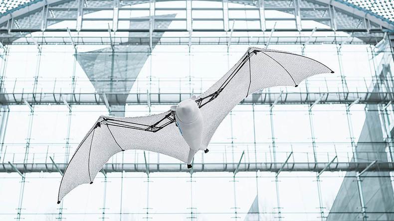 Er gleitet, stürzt und hängt kopfüber: Deutsche Firma entwickelt bionischen Flughund