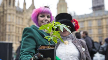 Zwei Frauen posieren mit einer Cannabis-Pflanze vor dem britischen Parlament während der Proteste für die Legalisierung von Cannabis-Konsum zu medizinischen Zwecken Ende Februar 2018