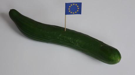 Von 1988 bis 2009 gab es EU-Normen für Gurken.