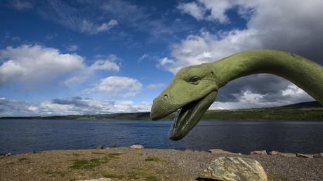 Ist das Ungeheuer von Loch Ness tot? Mysteriöses Nessie-ähnliches Wesen an US-Strand gespült (Symbolbild)