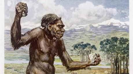 Wissenschaftler: Neandertaler kurierten sich mit Aspirin und Antibiotika