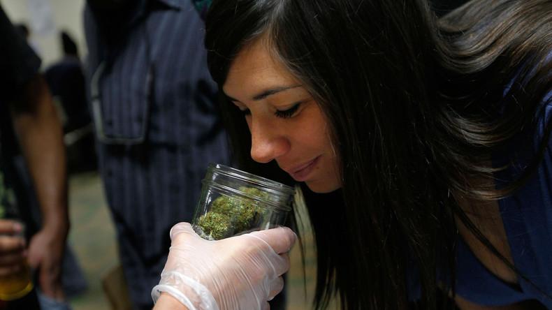 Geruch führt Polizistin zu Cannabis-Plantage