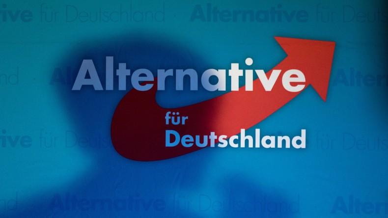 AfD-Parteispitze entscheidet sich für Desiderius-Erasmus-Stiftung