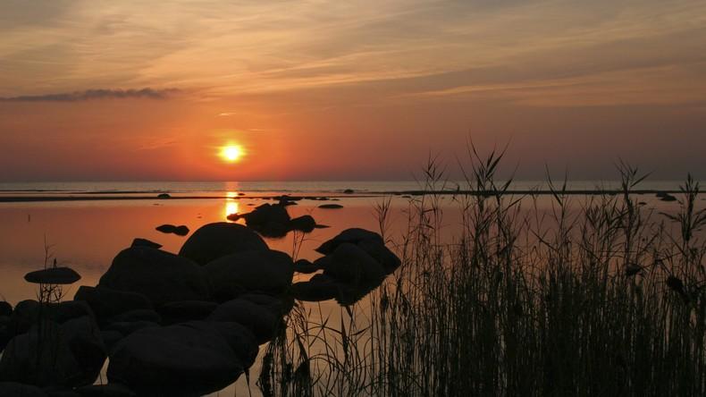 Eingewanderte Krabbenart verändert Ostseebucht