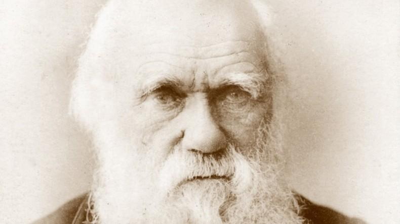 Darwins Brief zur Gottesfrage für 125.000 Dollar verkauft