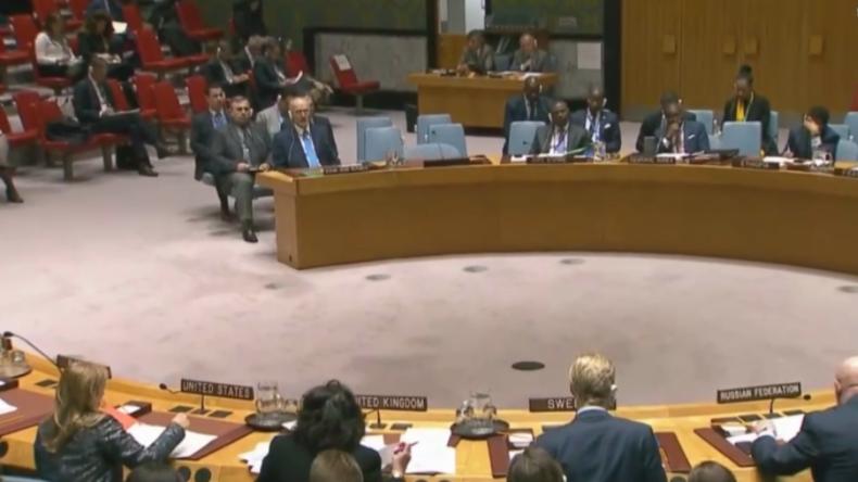 """""""Ob und wann OPCW-Team Duma betritt, hängt allein von UN ab - nicht von Russland oder Syrien"""""""