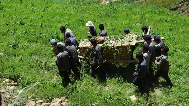 Leichendiebstahl als Ehrensache: Alte Bräuche bringen fünf Chinesen hinter Gitter