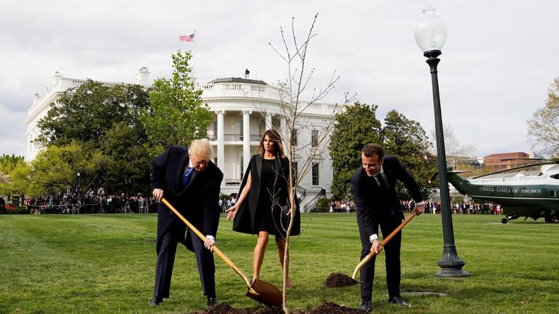 """Macron und Trump pflanzen Eiche, Twitter-User lästern: """"Begraben sie die Demokratie?"""""""