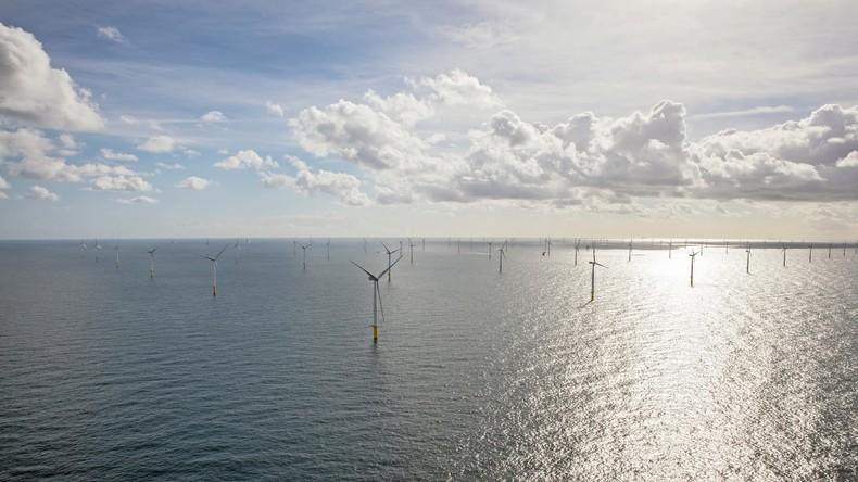 Offshore-Energie nach Marktkonditionen: Vattenfall baut ersten Windpark ohne Subventionen in Holland