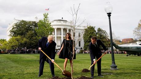 Macron und Trump pflanzen einen Baum, Internetnutzer amüsieren sich