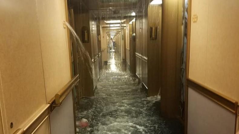 Überschwemmung auf hoher See: Wasserleitung auf Kreuzschiff geht kaputt – 50 Kajüten unter Wasser