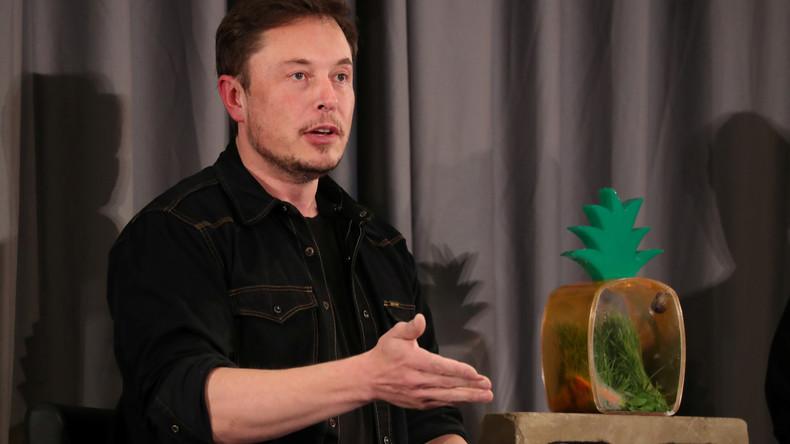 Umstrittener Vorstoß: Elon Musk will Online-Rating für Journalisten einführen (Video)