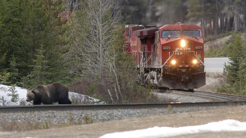 Kanada: Zug mit 80 Menschen entgleist und kippt um – keine Todesopfer