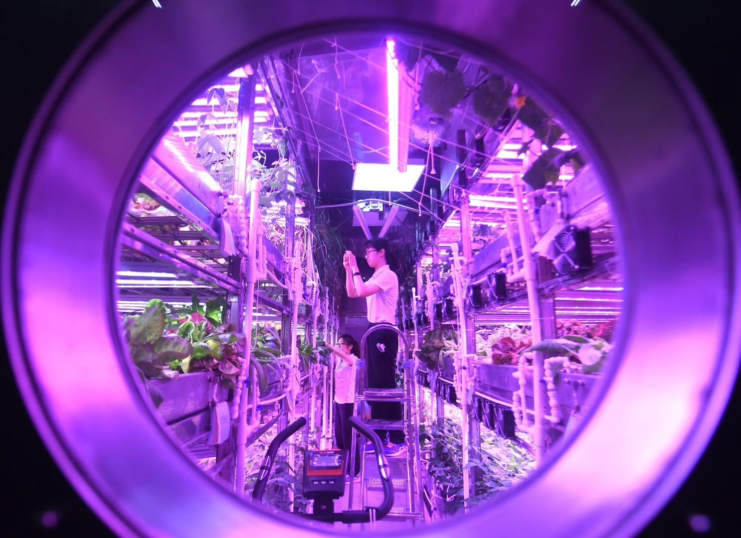 Ein Jahr unter der Glaskuppel: Experiment mit Mondbasis-Simulation in China endet mit Weltrekord