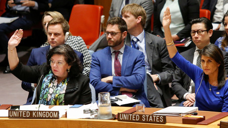 """Nimrata """"Nikki"""" Haley, die derzeitige US-Botschafterin bei den Vereinten Nationen"""