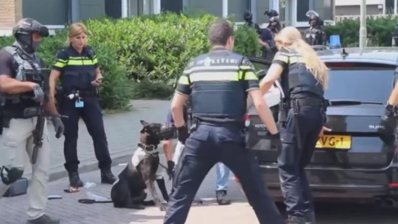 """Niederlande: Syrer schreit bei Festnahme """"Allahu Akbar"""" und tötet Polizeihund mit einer Axt"""