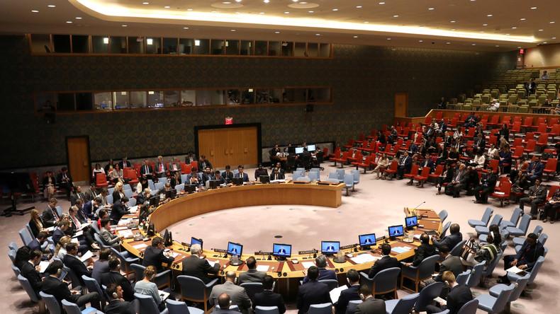 Deutschland in den Sicherheitsrat der Vereinten Nationen gewählt