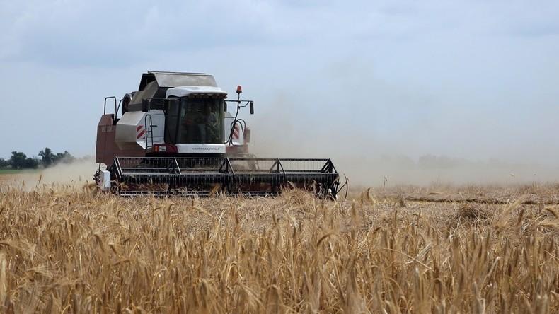 Russland verstärkt Investitionen in boomende Landwirtschaft der Krim