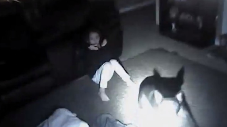 US-Polizist erschießt Hund und verletzt neunjähriges Mädchen