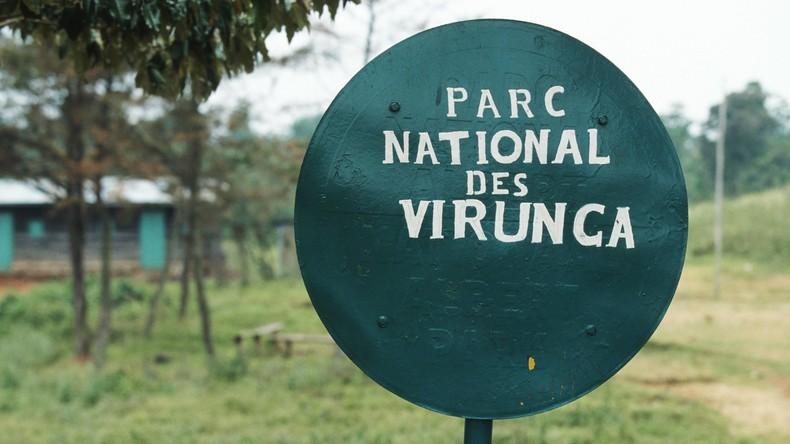 Kongo will Ölbohrungen in geschützten Nationalparks erlauben