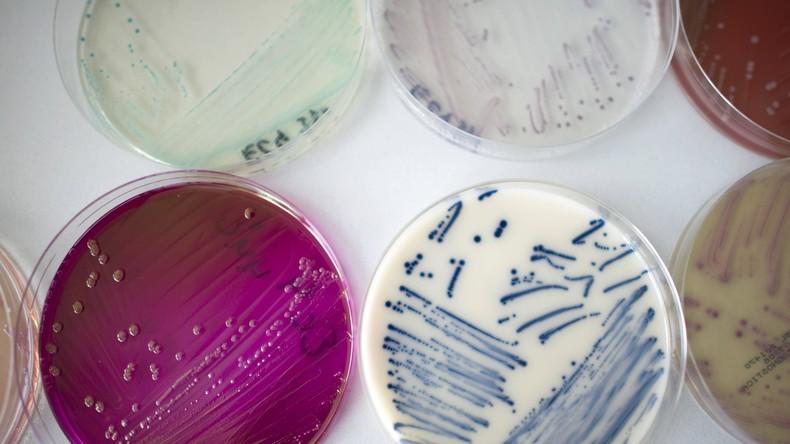 Forscher gehen mit Arzneimittel-Mischungen gegen multiresistente Bakterien vor