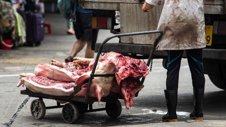 Mit guten Noten die Brötchen verdienen: Kinder in China für gutes Zeugnis mit Fleisch belohnt