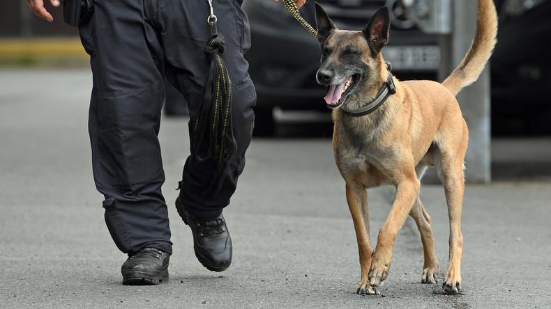 Bayerische Grenzpolizei soll nur in Absprache mit Bund aktiv werden