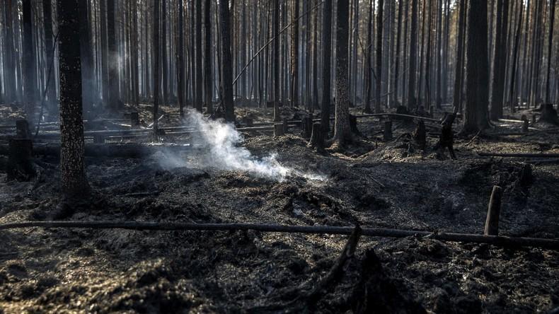 Großer Torf- und Waldbrand: Lettland braucht internationale Hilfe