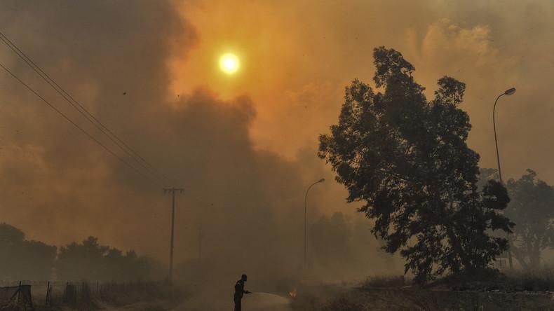 Extreme Hitze und Waldbrände weltweit