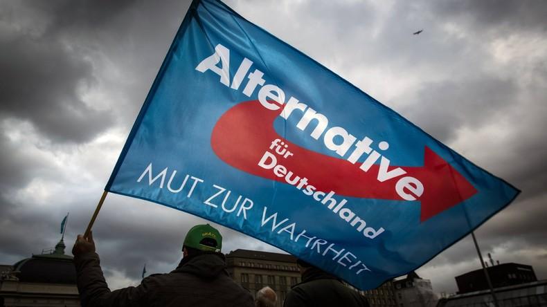 Die AfD-Außenpolitik: Zwischen Friedensdiktion und Machtprojektion