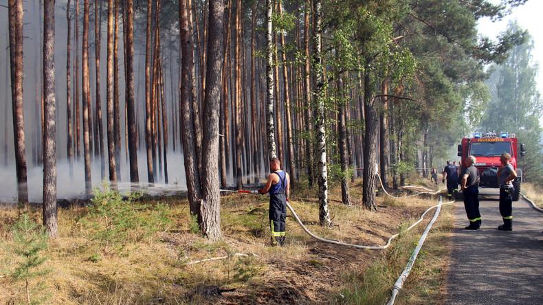 Polizei: Waldbrand bei Potsdam unter Kontrolle, Lage weiter riskant - Weltkriegsmunition gefunden