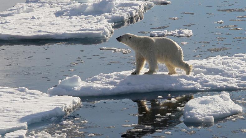 China plant die Entwicklung von touristischen Routen durch die Arktis Russlands