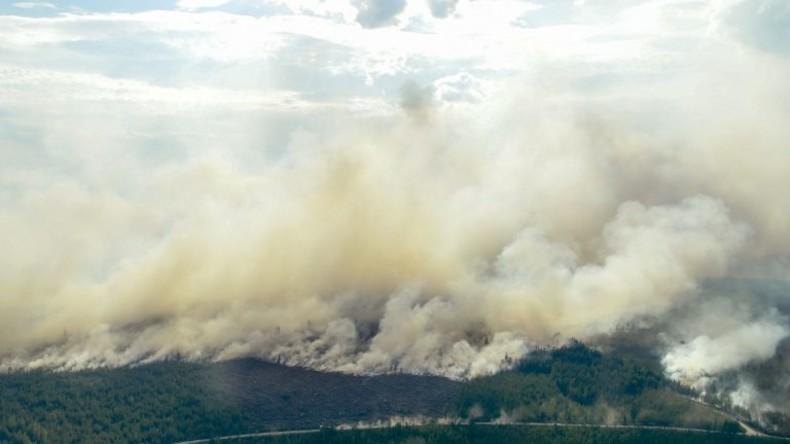 Schweden: Mit Fliegerbomben gegen Waldbrände