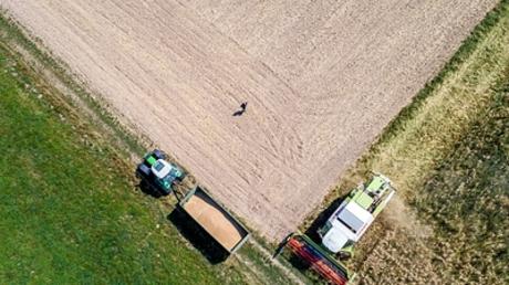 Bauern in Not: Getreideernte bei Oberursel, Juli 2018