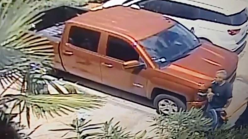 Haidiebstahl aus Aquarium in San Antonio - Verdächtiger verhaftet