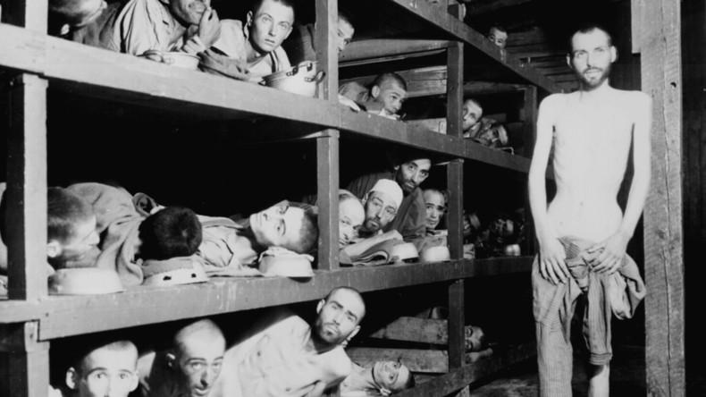 """""""Haben innere Kraft nicht genutzt"""": US-Uni-Lektüre gibt Holocaust-Opfern Schuld an ihrem Tod"""