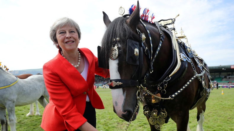 Theresa May lässt Noteinsatzpläne der Armee im Falle eines No-Brexit-Deals ausarbeiten