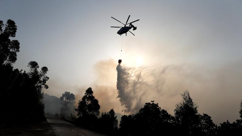 46 Grad in Portugal: Waldbrände noch nicht unter Kontrolle - mindestens 24 Menschen verletzt