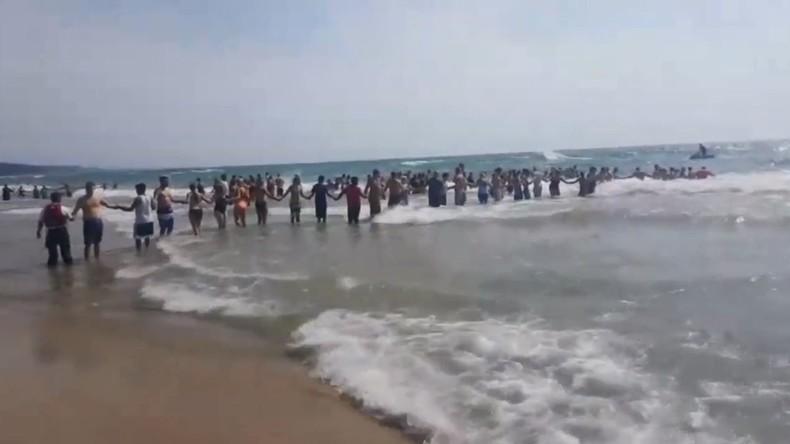 Um vermissten Schwimmer zu retten: US-Strandbesucher bilden Menschenkette