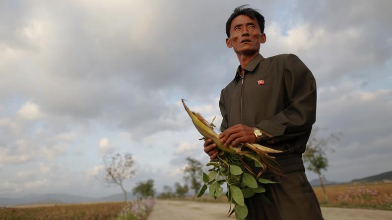 Rotes Kreuz warnt vor neuer Hungersnot in Nordkorea - Ende der Sanktionen nicht in Sicht