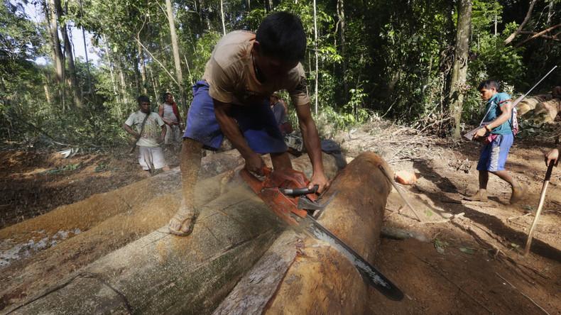 Indigene aus neun Ländern fordern besseren Schutz für Amazonasgebiet