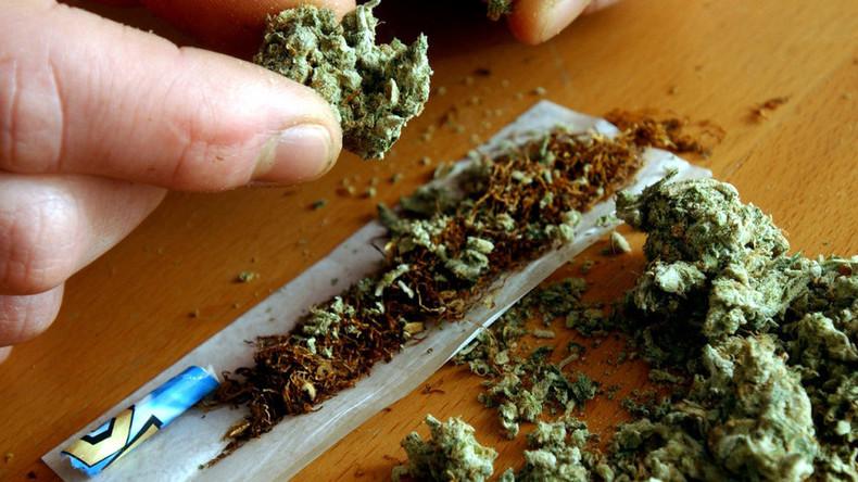Großbritannien: Verschleppte und versklavte Kinder schuften auf illegalen Cannabis-Plantagen