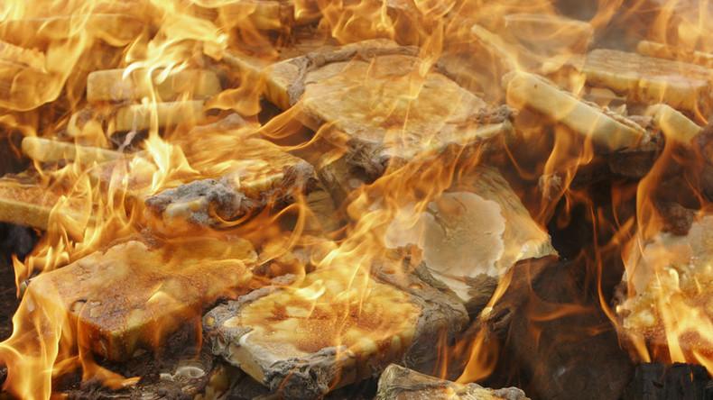 In der russischen Botschaft in Argentinien sichergestelltes Kokain wurde verbrannt