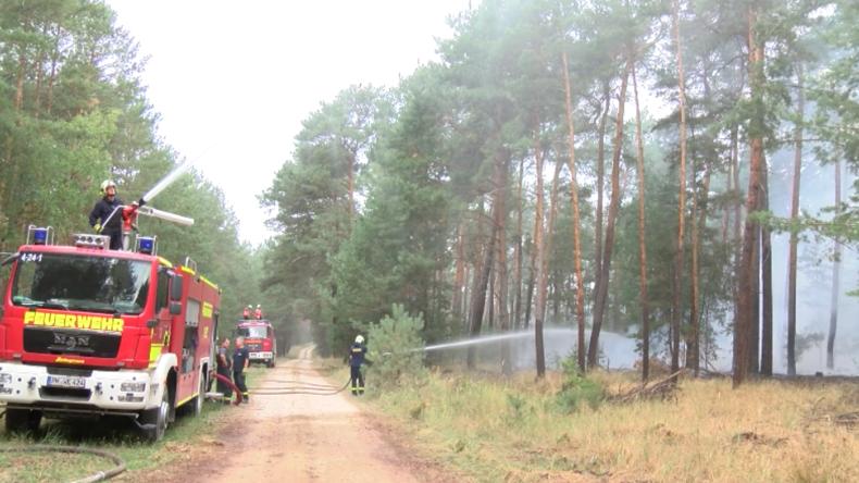 """""""Der Wind macht uns große Sorgen"""" - Riesiger Waldbrand wütet vor Berlin"""