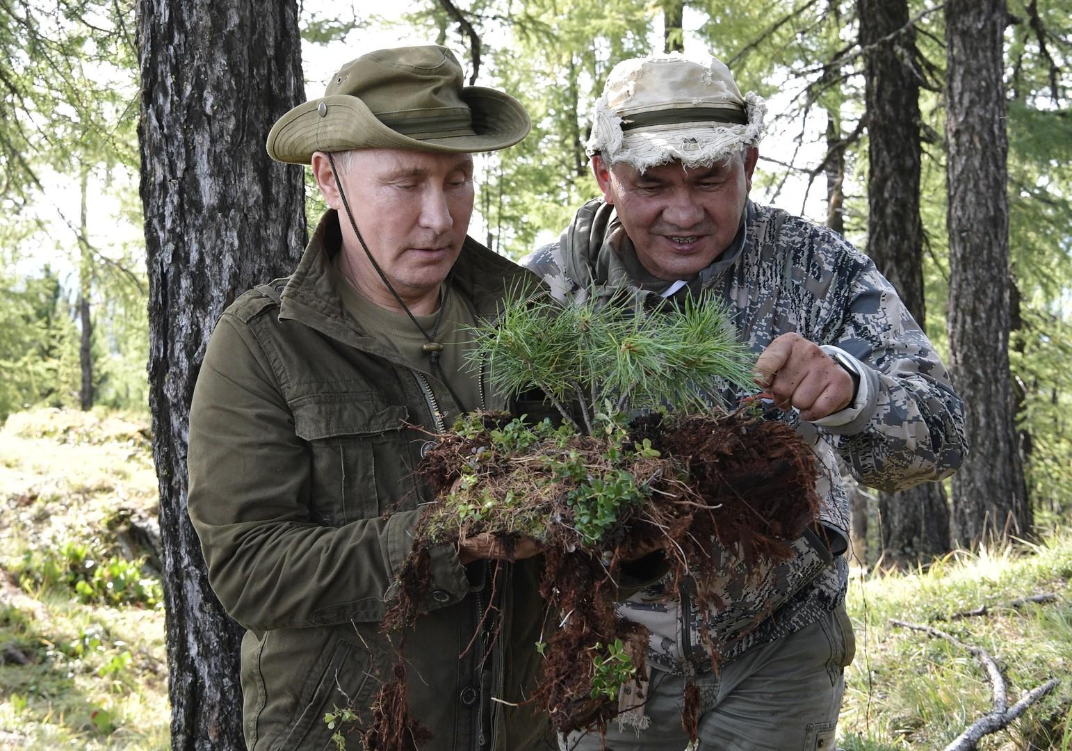 Putin und Schoigu