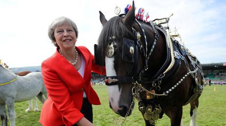 Britische Premierministerin Theresa May lässt Noteinsatzpläne der Armee ausarbeiten, falls bei einem No-Brexit-Deal die Versorgung und Logistik zusammenbricht.