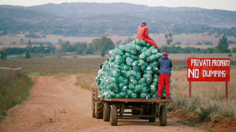 Landarbeiter ernten Kohl auf einer Farm in Eikenhof bei Johannesburg, Südafrika 21. Mai 2018.