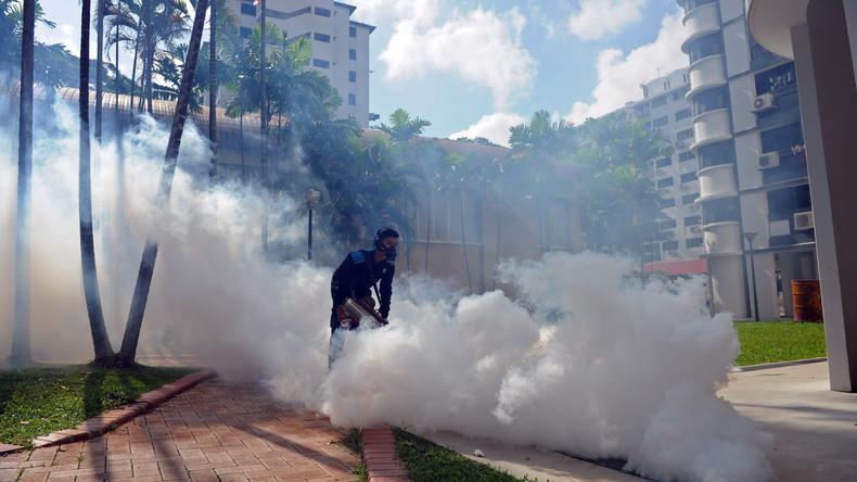 Britisches Paar stirbt in ägyptischem Hotel - Insektizid-Einsatz mögliche Todesursache